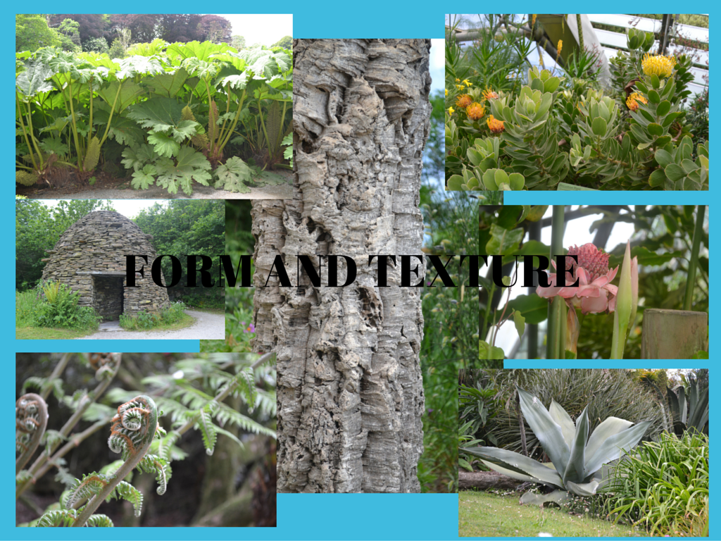 Montage of images of textural plants