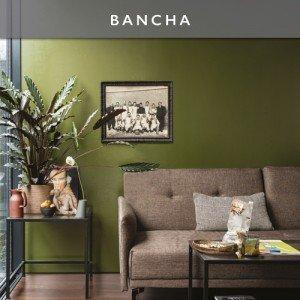 BANCHA-Button