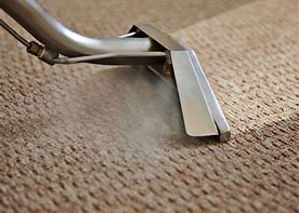 Image of carpet being steam clean